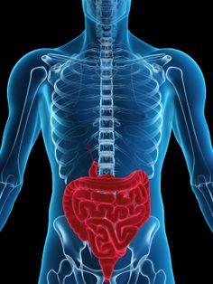 Medical Marijuana And Crohn's Disease