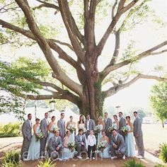 Real Weddings - A Tented Wedding in Huntersville, NC - Light Aqua and Gray Attire