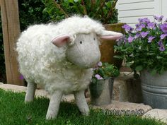 LOVE sheep.