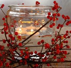 decor, holiday, cranberri, idea, floating candles
