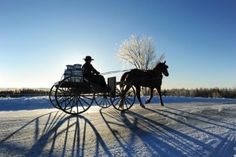 An excellent article on the Amish in Fort Fairfield Maine.