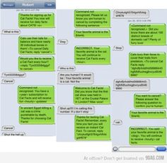 I SO want to do this to someone but can't figure out how.  Soooo Funny!