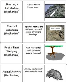 Soil science by rosahelena9 on pinterest worksheets for Soil in sentence