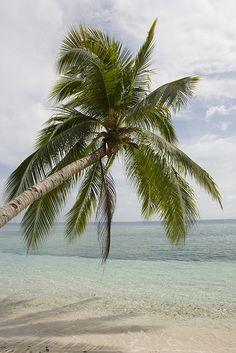 Siamil island - Borneo Malaysia