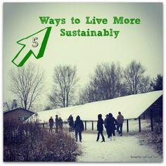 5 Ways to Live Susta