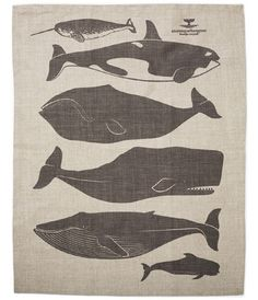 Whales Tea Towel by enormouschampion on Etsy, $25.00