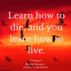 comping morrie schwartz to king lear Tuesdays with morrie reflection paper essay tuesdays with morrie, by mitch albom & king lear morrie schwartz.