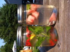 tappstipstv.blogspot.com Homemade flavored water. Lemon, mint and goji berry and watermelon lime. Yum!