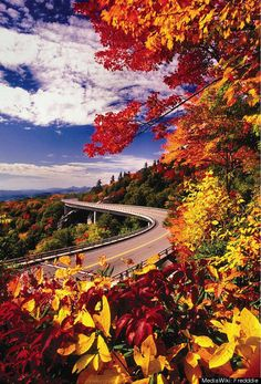 Blue Ridge Parkway, North Carolina and Virginia..I've been on this road in the fall. very pretty colors