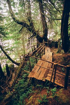 Wooden Path, British Columbia, Canada...reminds me of veld school♥♥