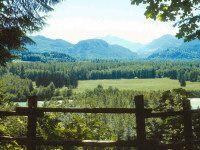 Travel Washington with your Ridgeback -   Rockport State Park = Washington