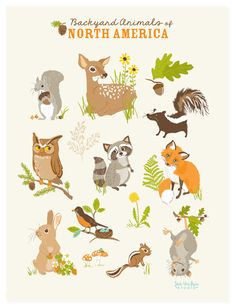 POSTER Animals of North America Charity by SeaUrchinStudio, $15.00