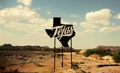beer, new homes, bears, texas, dalla, signage design, road, sweet home, squirrel