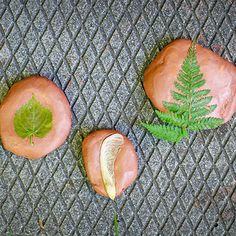 Making rocks using items from nature / Fabrication de roches avec des éléments de la nature   DeSerres