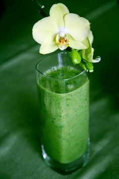 Vegetable Green Smoothie Recipes