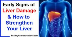 Early Signs of Liver Damage  How to Strengthen Your Liver