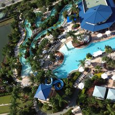 Hilton Orlando!!
