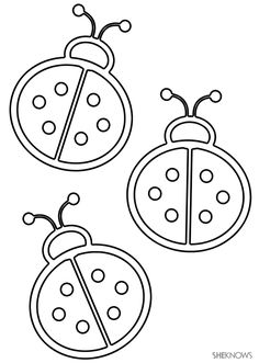 3 ladybugs - Free Printable Coloring Pages