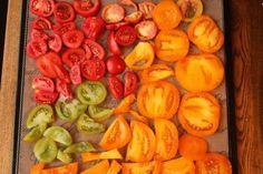 Sundried tomatoes in dehydrator