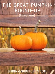 The Great Pumpkin Round-Up... pumpkin-y goodness from our #shrinkingkitchen to yours! #healthy #pumpkin #fall #recipes healthi pumpkin, pumpkin time, fall recip, pumpkin recip
