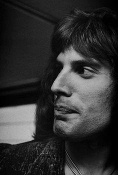More Freddie