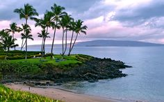 four seasons maui beach - Google Search...just a few more months!