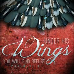 ❥ Under His wings, you will find refuge. Psalm 91:4