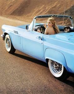 blue vintage car, dream, tiffany blue, thunderbird, road trips, carolina blue, baby blues