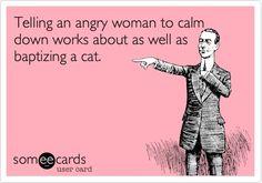 cats, calm, laugh, scari shit, giggl