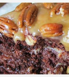 all new recipes: ::Easy Chocolate Turtle Cake::