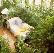 sun room with plants - Google Search