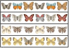 Free Butterfly Patterns activity