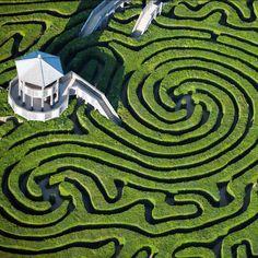 wiltshir, england, hedges, hedg maze, labyrinth