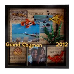 Quilled Underwater Fish Vacation 6x6 Tray