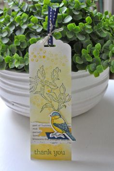Backyard Basics, Happy Watercolor Stampin Up by Cards and Scrapping