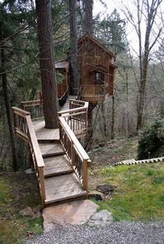 a treehouse dream....