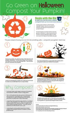 Begin with the Bin: Composting a Pumpkin