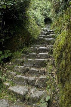 stair, macchu picchu hike, path, nature trails, nature snow, jungle ruins, the inca trail, backpacking trails, inca trail peru