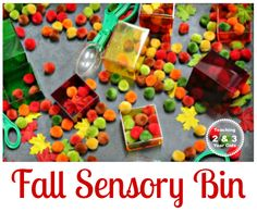 Fall sensory bin with pom poms for preschoolers.