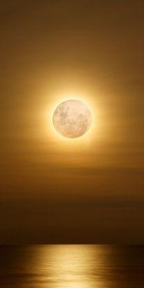 Lunar Gleam