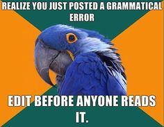 Paranoid parrot (originally seen by @Jenaqut606 )