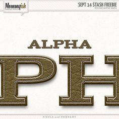 Quality DigiScrap Freebies: Stitched Leather alpha freebie from Mommyish
