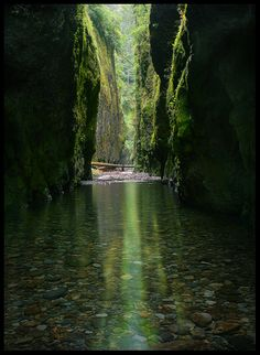 Oneonta Gorge in The Columbia River Gorge, Oregon