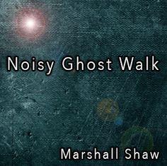 Noisy Ghost Walk | E