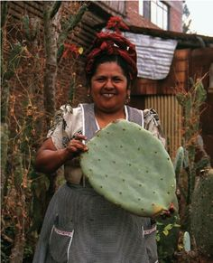 Nopal de oaxaca México