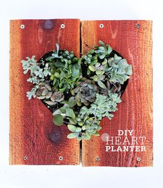 DIY Heart Planter by @Plainview Vintage Bergman / Freutcake