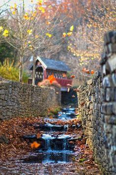 cover bridg, waterfalls, season, autumn leaves, covered bridges, place, kentucki, autumn waterfal, kentucky