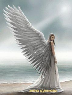 There are Angels all around us we just have to learn to feel their Wings!