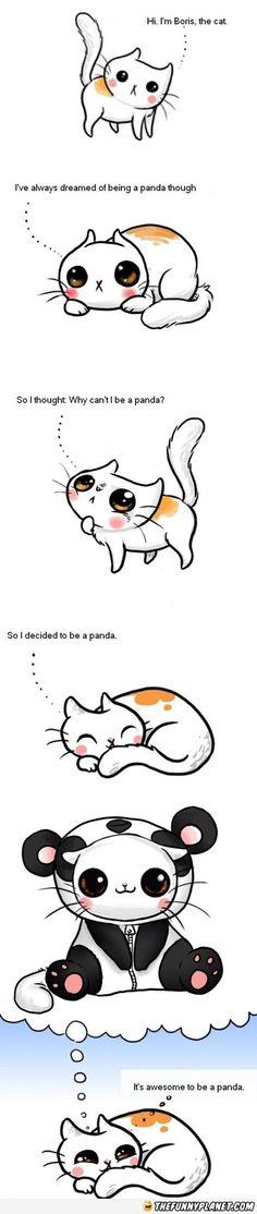 Kitty-Panda =)
