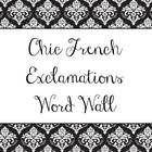 Put these words up around your classroom for some chic encouragement and positive thinking! Great for high school French class! Two words per page....